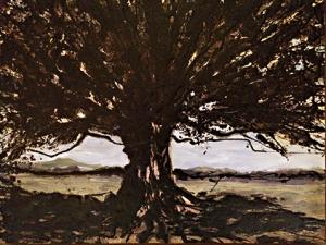 Oak Tree In Landscape