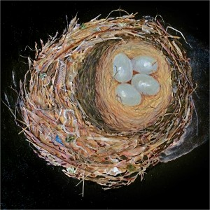 Nest MagnifiedSOLD