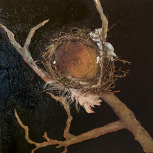 Long Gone - Eastern Kingbird Nest