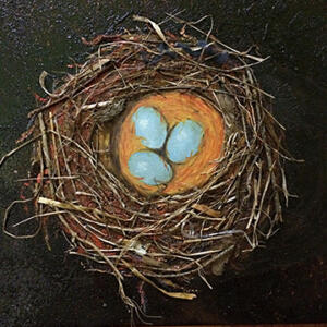 Robin's Nest on Black  SOLD